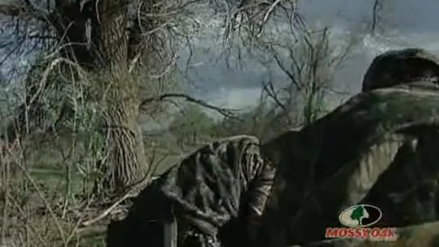 Southern Fried Turkey • Hunting Gobblers in the Deep South