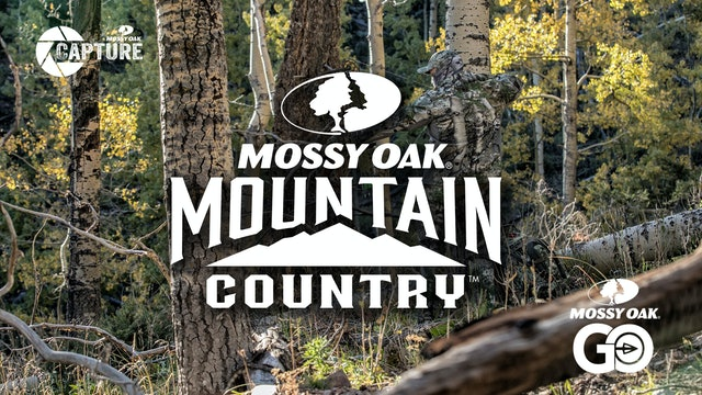 Mountain Country Elk  • Short Film
