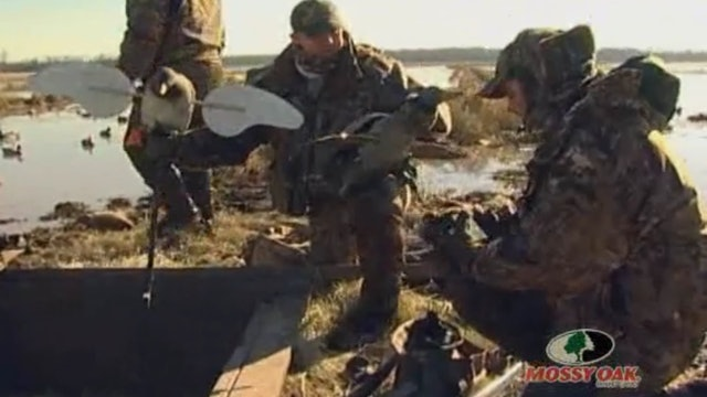Buckshot Bonanza • Duck Hunting Flooded Rice in Arkansas