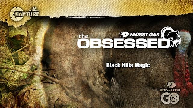Black Hills Magic • Wyoming Turkey Hunting