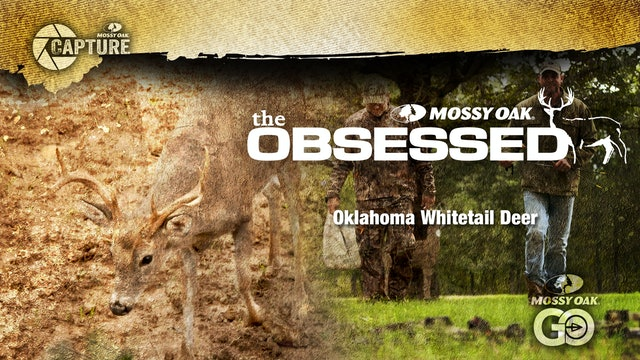The Obsessed • Oklahoma Whitetail Deer