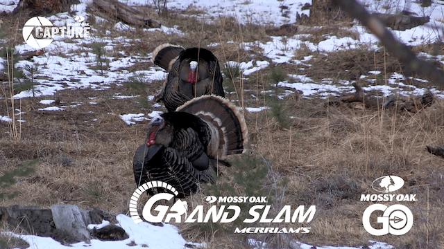 Grand Slam • Episode 10 • Merriams