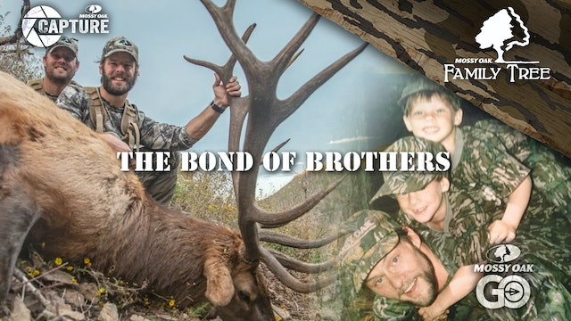 The Bond of Brothers • Family Tree
