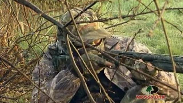 Iowa Gobblers • Hunting Gobblers in Iowa