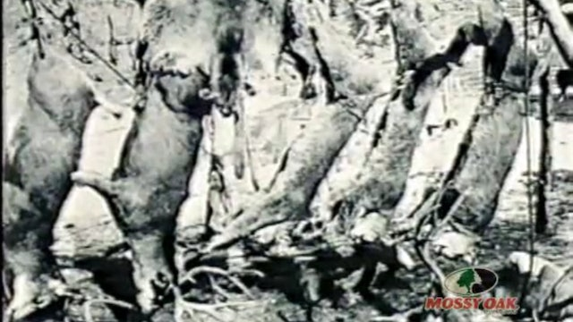 Farmers and Hunters Feeding the Hungry • Deer Hunts Provide Food for the Hungry