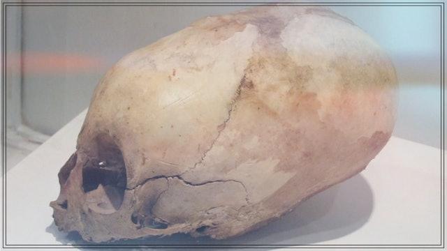 Exploring With Brien Foerster - Akhenaten And The Elongated Skulls