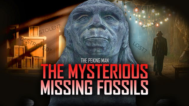 Ancient Peking Man Fossils Mysterious...