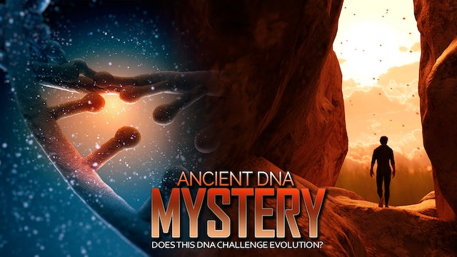 STRANGE ARCHEAOLOGICAL DISCOVERY