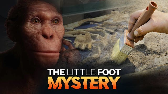 MYSTERIOUS ANCIENT HOMINID