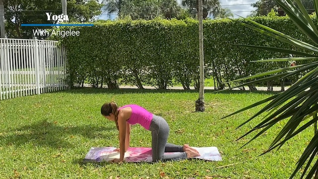 Yoga with Angelee - Upper Back and Neck -
