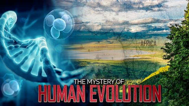 Humans Evolved in Africa!