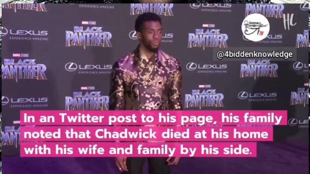 Chadwick Boseman Memorial Tribute