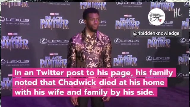 Chadwick Boseman Memorial Tribute