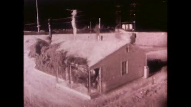 Operation Cue (1955)