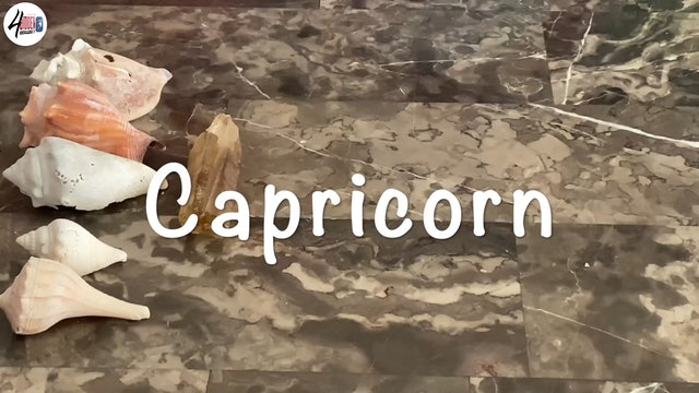 Capricorn The Road To Transformation