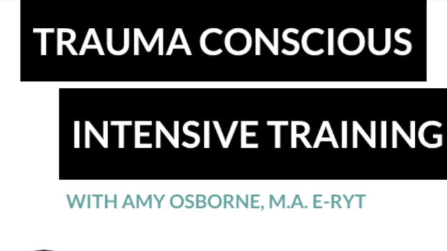 6-7. Trauma Conscious Intensive: Medi...