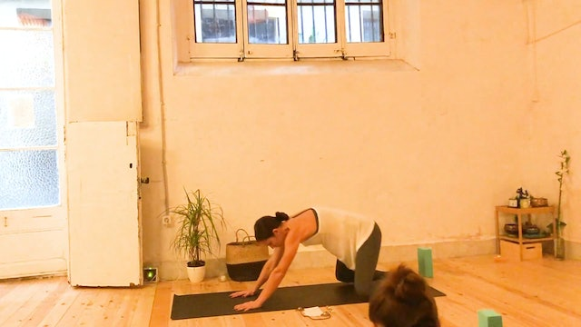 Beginners Yoga with Amy Wu