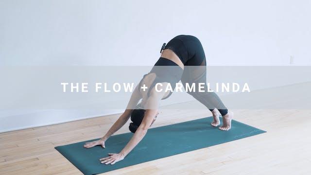 The Flow + Carmelinda (42 min)