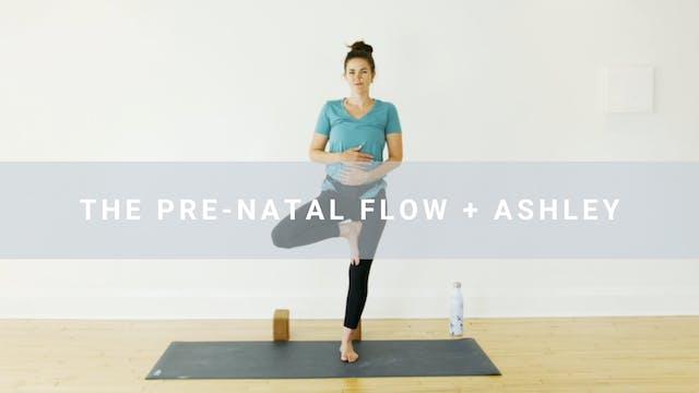The Prenatal Flow + Ashley (23 min)