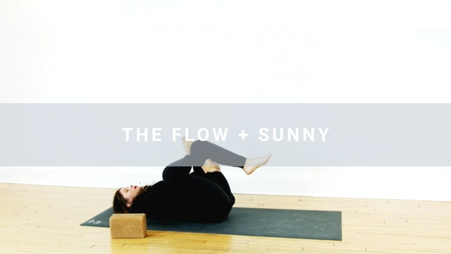 The Flow + Sunny (13 min)