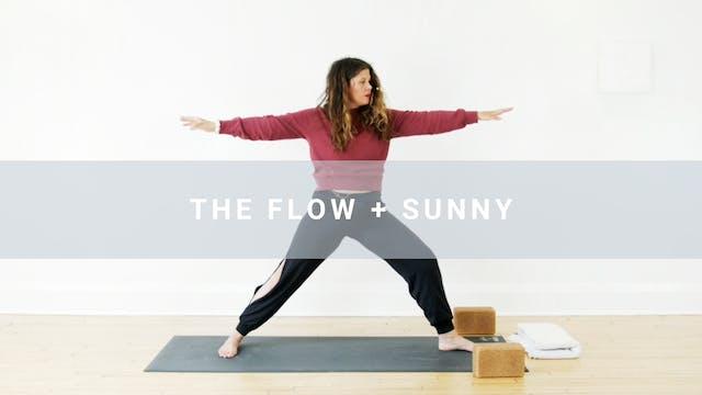 The Flow + Sunny (43 min)