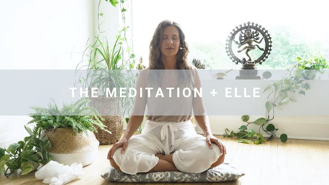 The Meditation + Elle (12 min)