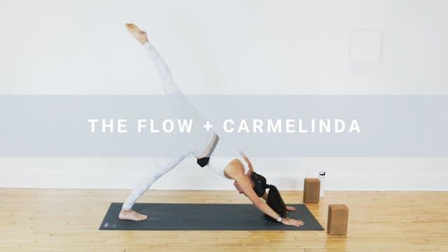 The Flow + Carmelinda (28 min)