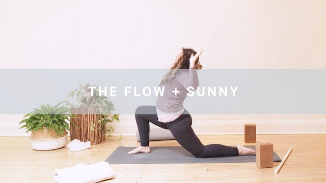 The Flow + Sunny (65 min)
