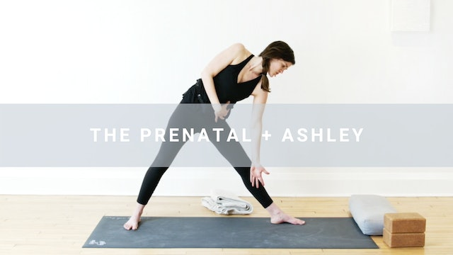 The Prenatal Yoga + Ashley (45 min)