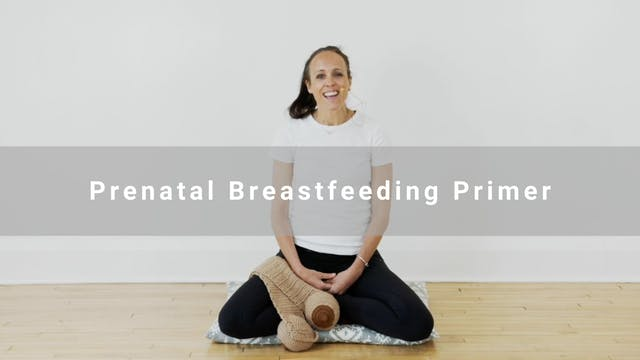 Prenatal Breastfeeding Primer