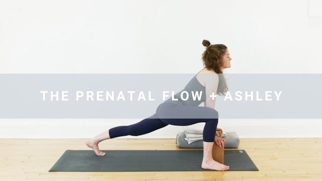 The Prenatal Flow + Ashley (30 min)
