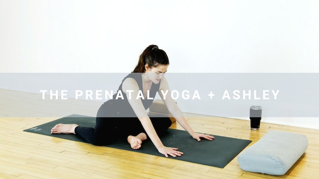 The Prenatal Yoga + Ashley (30 min)