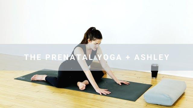 The Prenatal Yoga + Ashley (30 min)