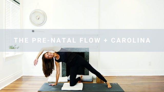 The Prenatal Flow + Carolina (33 min)