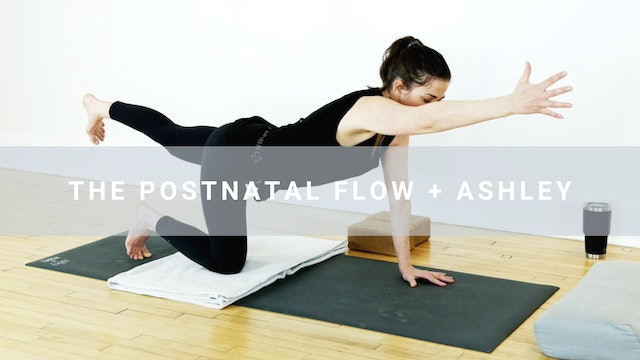 The Postnatal Flow + Ashley (30 min)