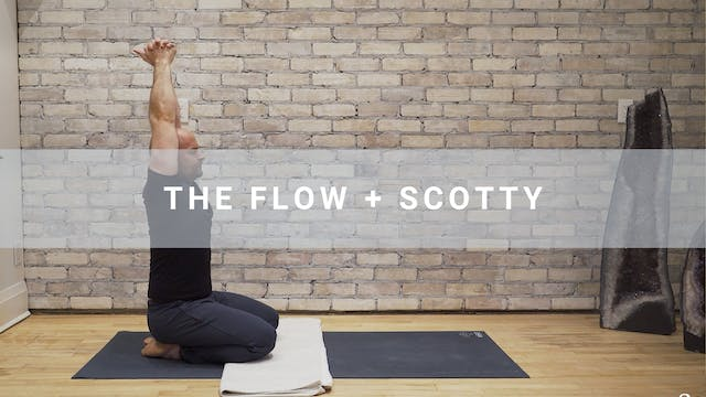 The Flow + Scotty (60 min)
