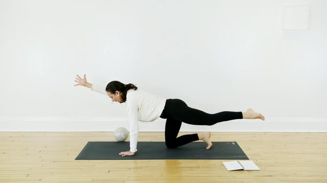 The Pilates + Michelle (22 min)