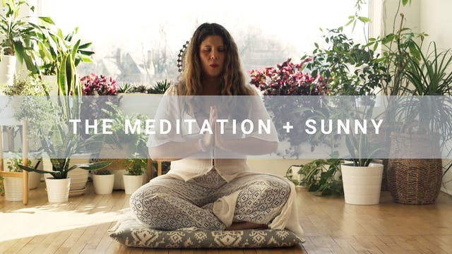 The Meditation + Sunny (10 min)