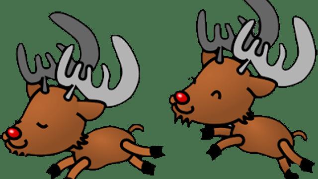 Reindeer Having Fun