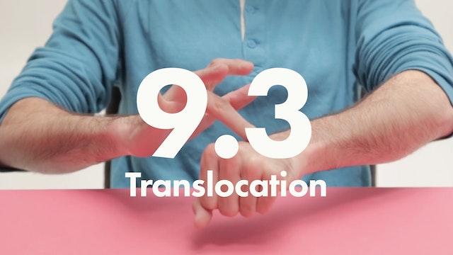9.3 Sequences Translocation