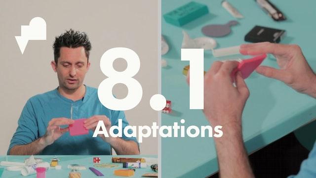 8 Adaptations