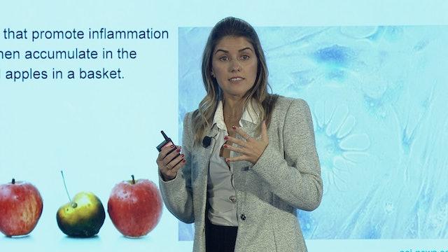 Carolina Reis, PhD on Aesthetics