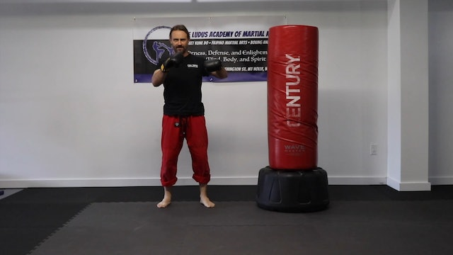 Online Class: Two Punch Combinations