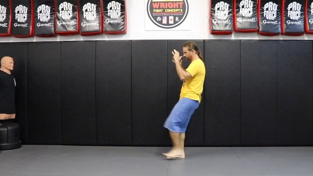 Online Class (Level 4) Movement w punches & kicks