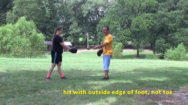 Online Class - Basic Kicks & Pendulum...