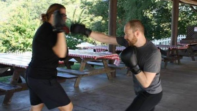 Art of the Focus Mitts Online Class (July 21, 2017)