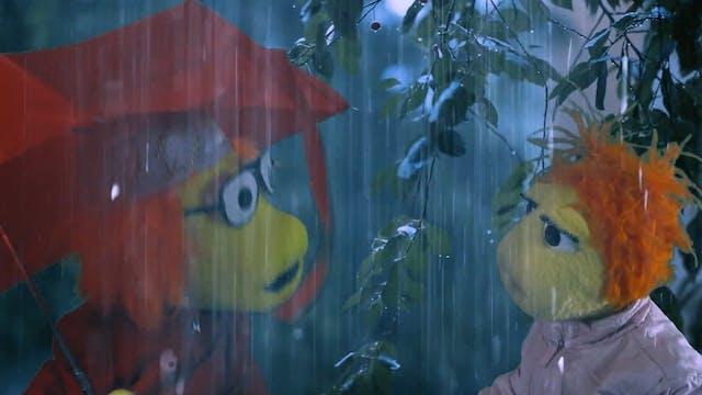 Adam's Rainy Day