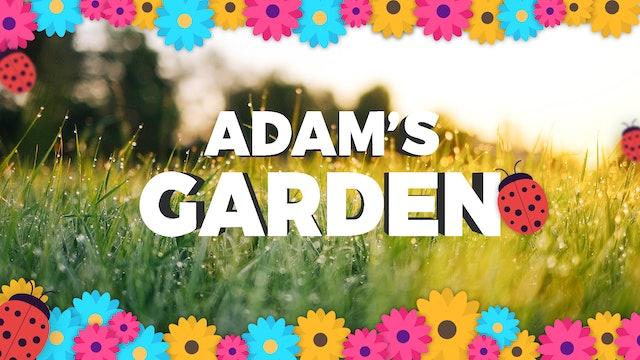 Adam's Garden