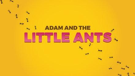 Adam's World Video