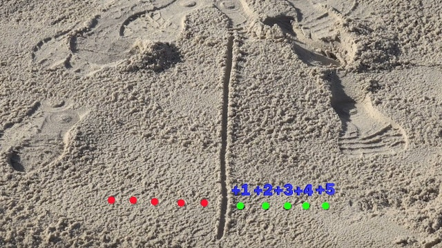 Ground Contact Mapping